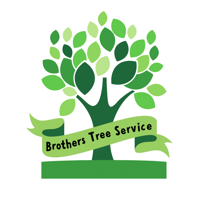 Brothers Tree Service